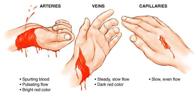 bllod